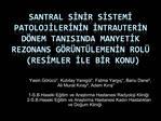 SANTRAL SINIR SISTEMI PATOLOJILERININ INTRAUTERIN D NEM TANISINDA MANYETIK REZONANS G R NT LEMENIN ROL             RESIM