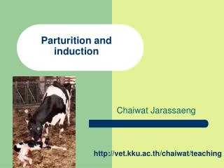 Parturition and  induction