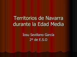 Territorios de Navarra durante la Edad Media