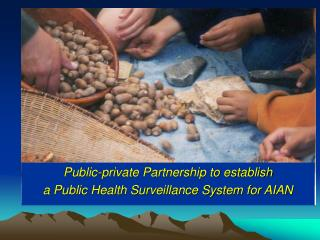 Public-private Partnership to establish a Public Health Surveillance System for AIAN