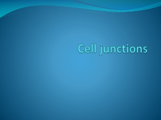 CELL JUNCTIONS