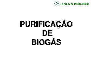 JANUS  PERGHER