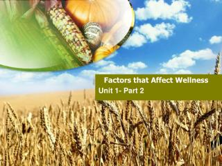 Factors that Affect Wellness