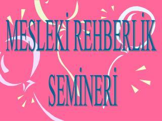 MESLEKI REHBERLIK  SEMINERI