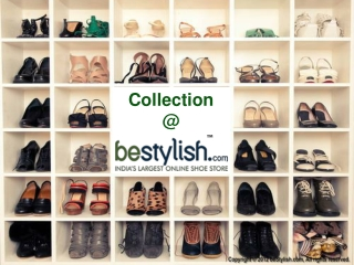 Collection at bestylish.com