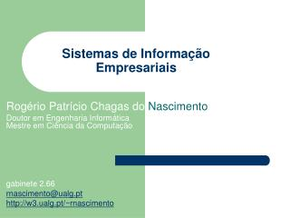 Sistemas de Informa  o Empresariais