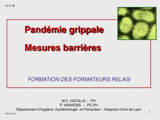Pand mie grippale  Mesures barri res  FORMATION DES FORMATEURS RELAIS