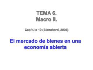 TEMA 6.  Macro II.  Cap tulo 19 Blanchard, 2006