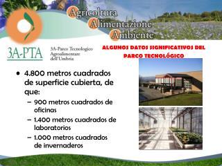 4.800 metros cuadrados de superficie cubierta, de que: 900 metros cuadrados de oficinas 1.400 metros cuadrados de labora