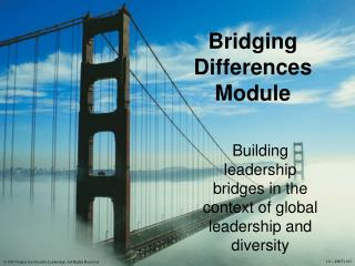 Bridging Differences Module