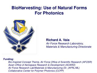 BioHarvesting: Use of Natural Forms For Photonics