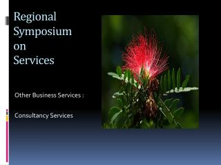 Regional Symposium on  Services