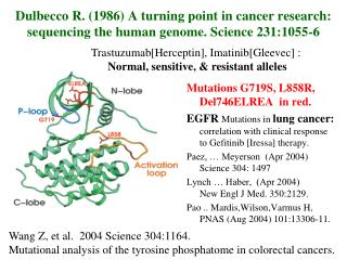 Dulbecco R. 1986 A turning point in cancer research: sequencing the human genome. Science 231:1055-6