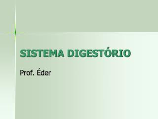 SISTEMA DIGEST RIO