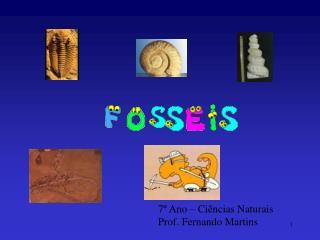 7  Ano   Ci ncias Naturais Prof. Fernando Martins