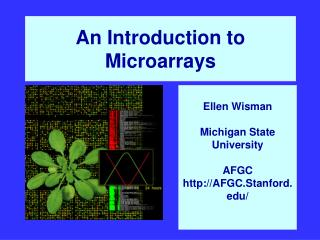 An Introduction to  Microarrays