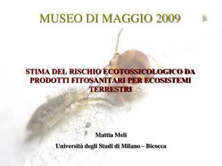 MUSEO DI MAGGIO 2009