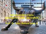 UNIVERSIDADE ESTADUAL DE MARING  AGRONOMIA CAMPUS REGIONAL DE UMUARAMA