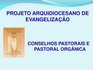 PROJETO ARQUIDIOCESANO DE EVANGELIZA  O