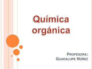 Profesora: Guadalupe N  ez