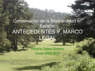 Conservaci n de la Biodiversidad en Espa a: ANTECEDENTES Y  MARCO LEGAL