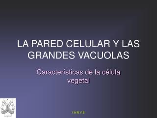 LA PARED CELULAR Y LAS GRANDES VACUOLAS