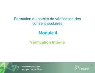 Formation du comit  de v rification des conseils scolaires   Module 4   V rification Interne