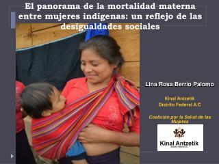 El panorama de la mortalidad materna entre mujeres ind genas: un reflejo de las desigualdades sociales