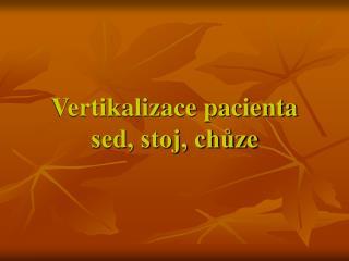 Vertikalizace pacienta sed, stoj, chuze