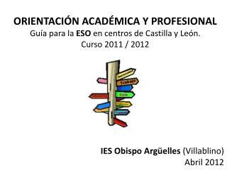 ORIENTACI N ACAD MICA Y PROFESIONAL Gu a para la ESO en centros de Castilla y Le n.  Curso 2011