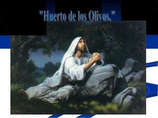 Huerto de los Olivos.