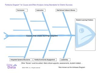 Fishbone Diagram for Cause-and-Effect Analysis Using Standards for District Success
