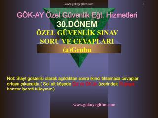 Gokayegitim