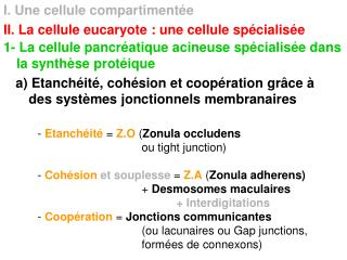 I. Une cellule compartiment e II. La cellule eucaryote : une cellule sp cialis e