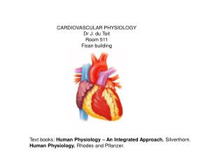 CARDIOVASCULAR PHYSIOLOGY Dr J. du Toit Room 511 Fisan building