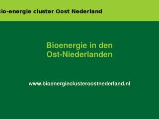 Bioenergie in den Ost-Niederlanden