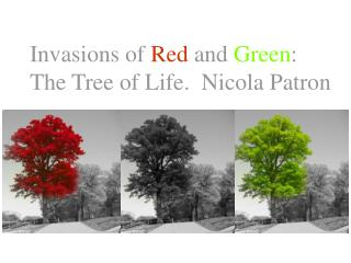 Invasions of Red and Green: The Tree of Life.  Nicola Patron