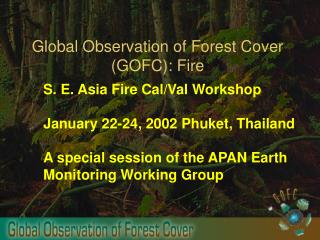 Global Observation of Forest Cover GOFC: Fire