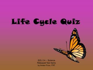 Life Cycle Quiz