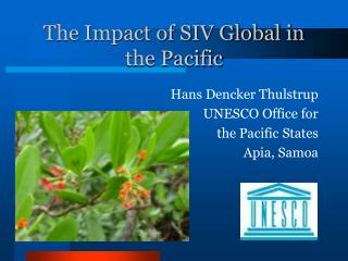 The Impact of SIV Global in the Pacific