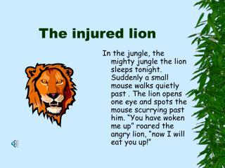 The injured lion