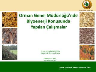 Orman Genel M d rl g  nde Biyoenerji Konusunda  Yapilan  alismalar