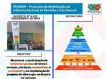 PROMINP   Programa de Mobiliza  o da Ind stria Nacional de Petr leo e G s Natural