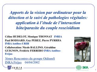 Apports de la vision par ordinateur pour la d tection et le suivi de pathologies v g tales: application   l  tude de l i