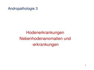 Andropathologie 3