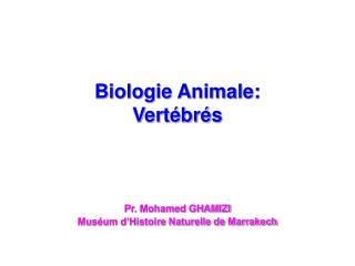 Biologie Animale:  Vert br s