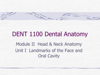 DENT 1100 Dental Anatomy