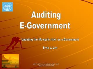 19th WGITA-meeting Beijing April 2010 - Auditing e-Government