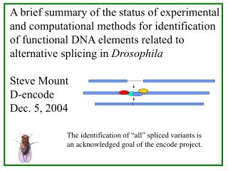 A brief summary of the status of experimental and computational methods for identification of functional DNA elements re