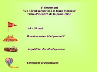 1  Document    De l  veil sensoriel   la trace mentale  Fiche d identit  de la production